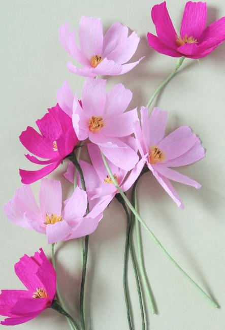Manolya çiçek
