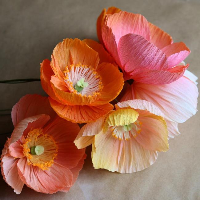 Güzel büyük çiçekler