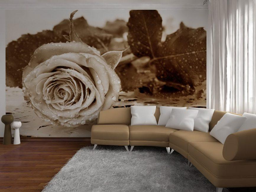 Dekoratif elemanları ile fotoğraf duvar kağıdı için tasarım seçeneği