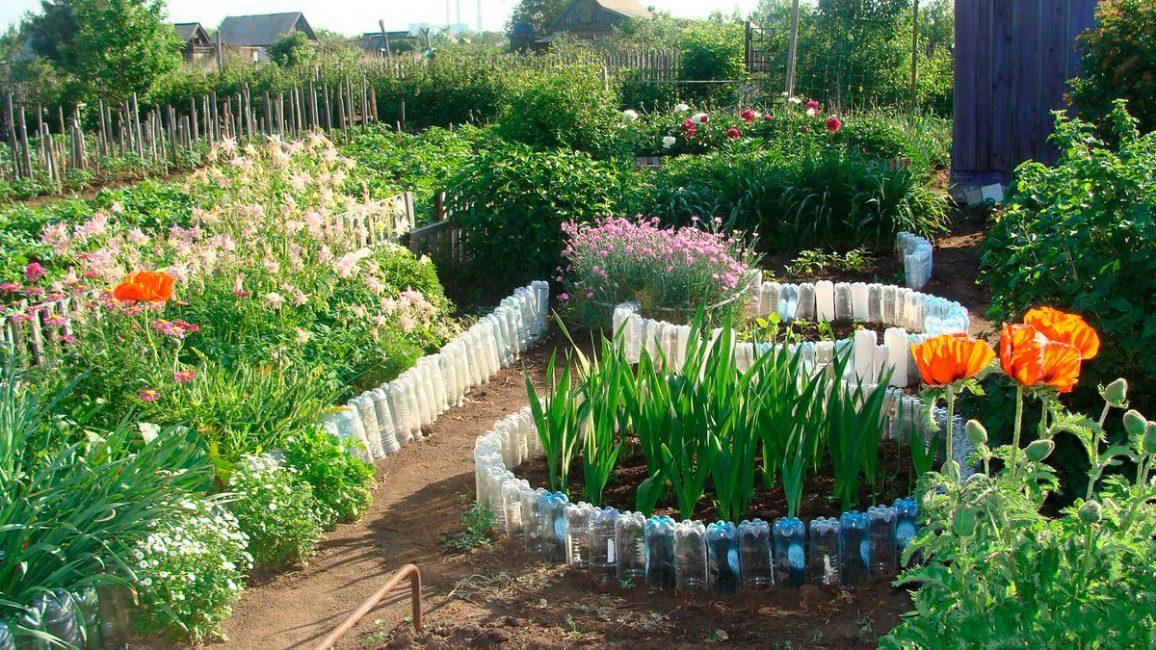 Seperti katil bunga melindungi tumbuhan dari banjir.