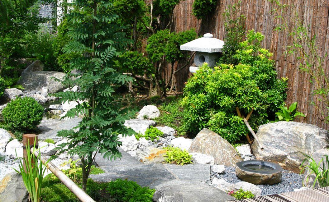 Untuk taman Jepun, tumbuh-tumbuhan hijau dengan daun-daun kecil dan bunga yang tidak mencolok adalah sempurna.
