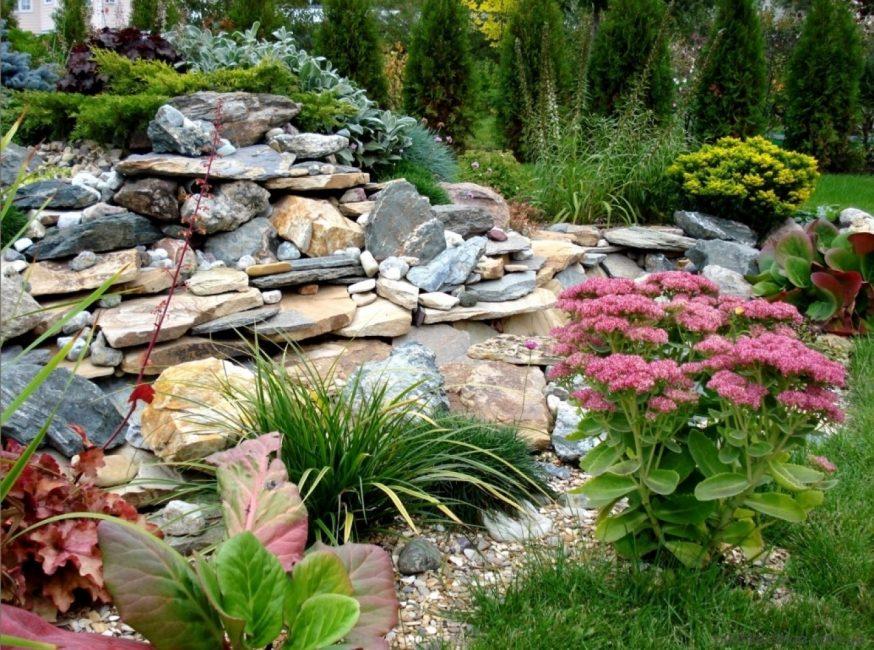Hiaskan taman anda dengan taman batu