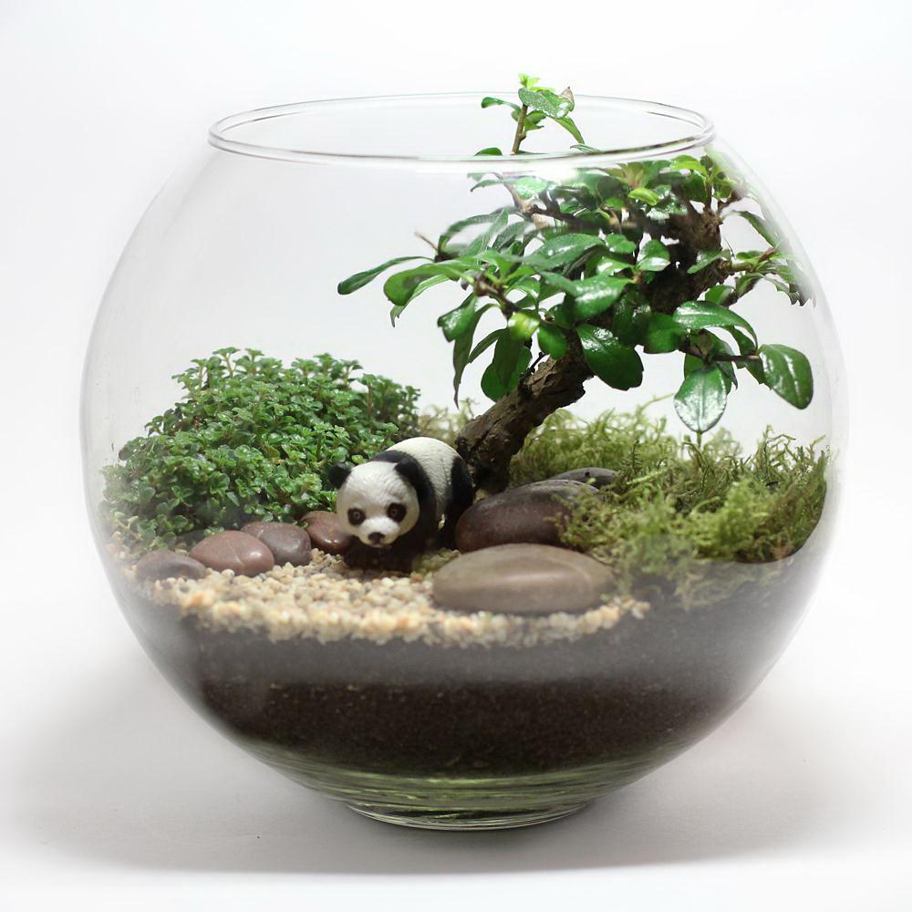 Estetika dan minimalism dalam satu mangkuk