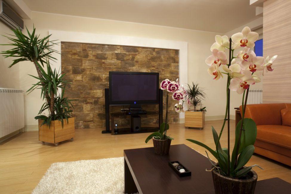 평범한 아파트를 진짜 동화로 바꿔라.