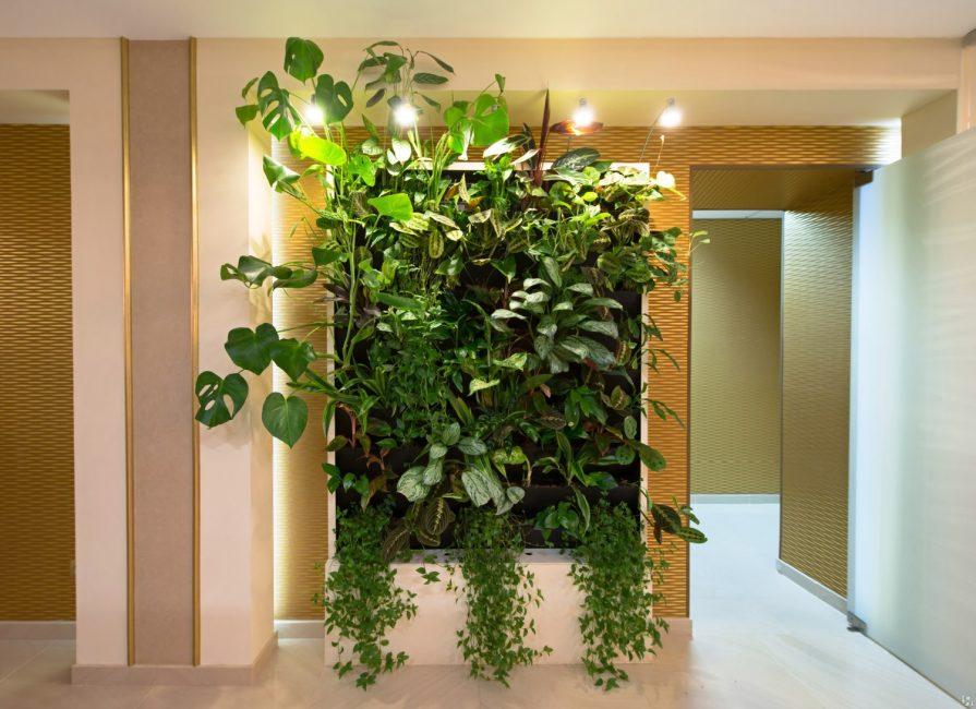 Penyelesaian menarik untuk mana-mana apartmen