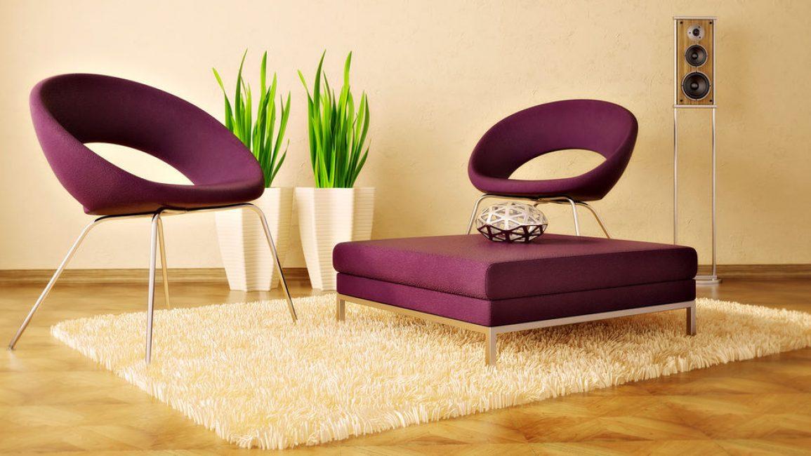 현대적인 스타일의 실내 식물