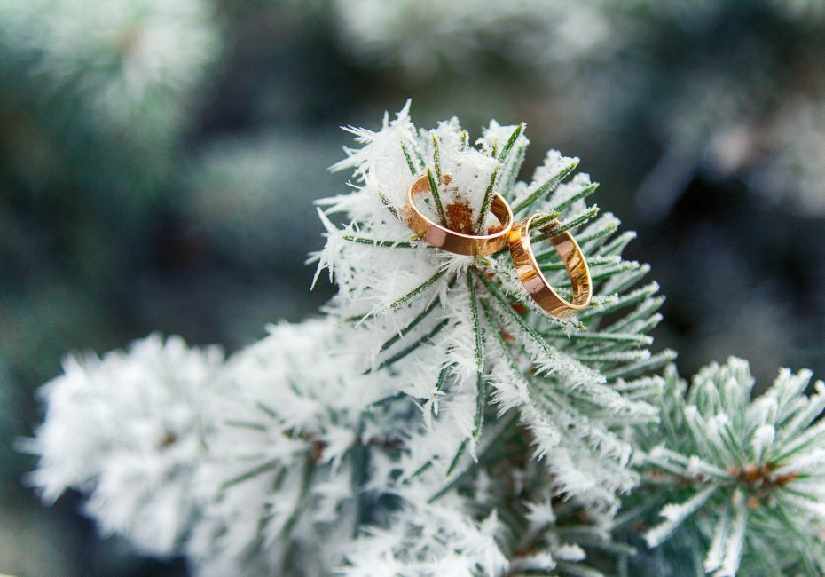 Suasana selesa walaupun di musim sejuk