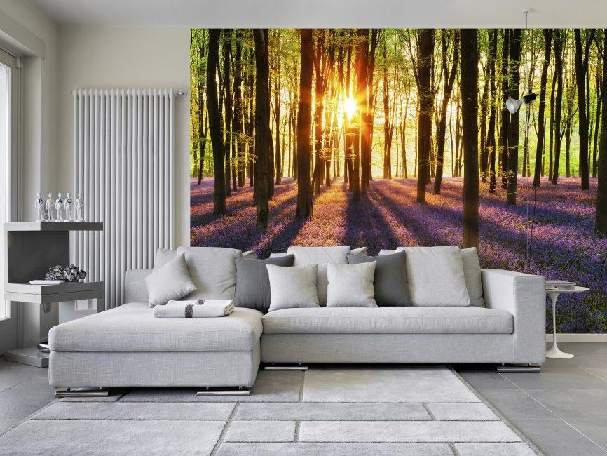Selectarea culorii este influențată și de direcția iluminării naturale din camera de zi.