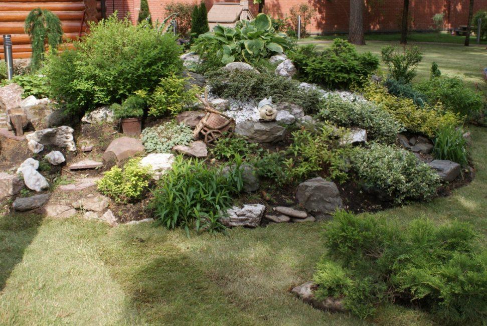 Taman tanpa tumbuhan berbunga