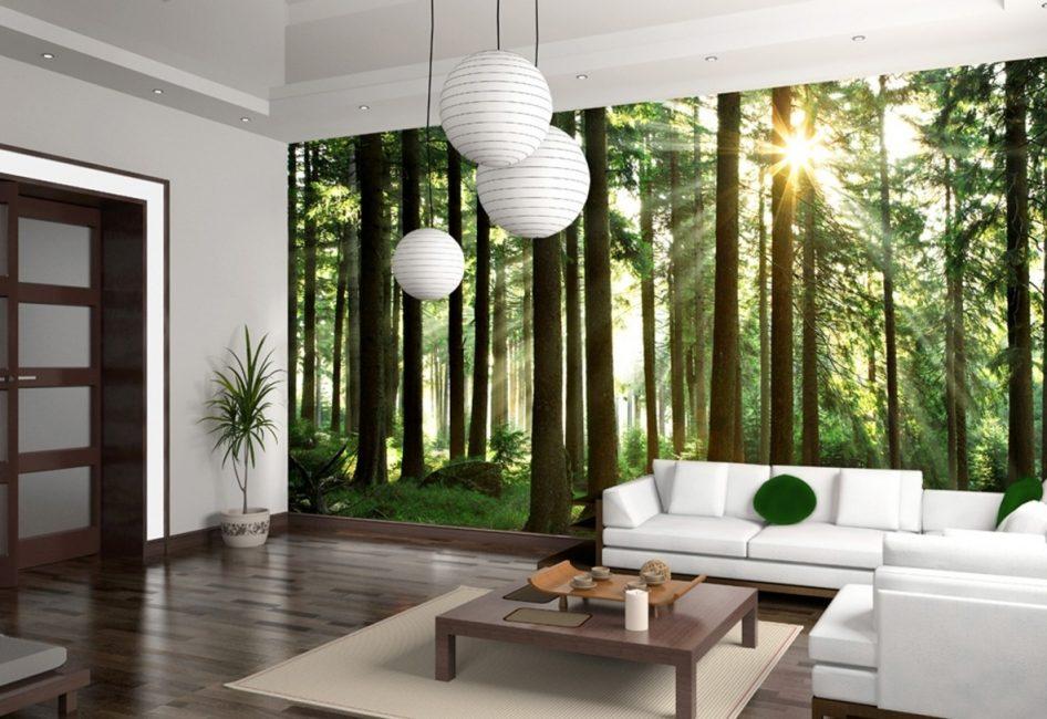 La base de la toile peut être: papier épais, vinyle, entoilage et autres matériaux synthétiques