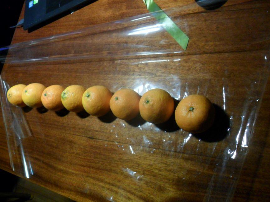 Letakkan 8 mandarin panjang