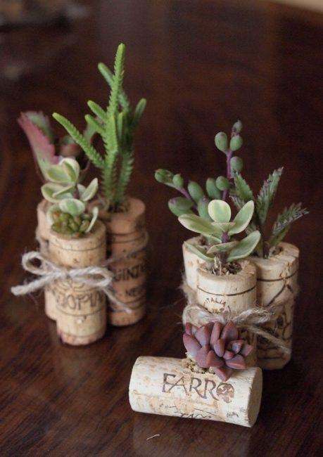 Pot kecil untuk tumbuhan
