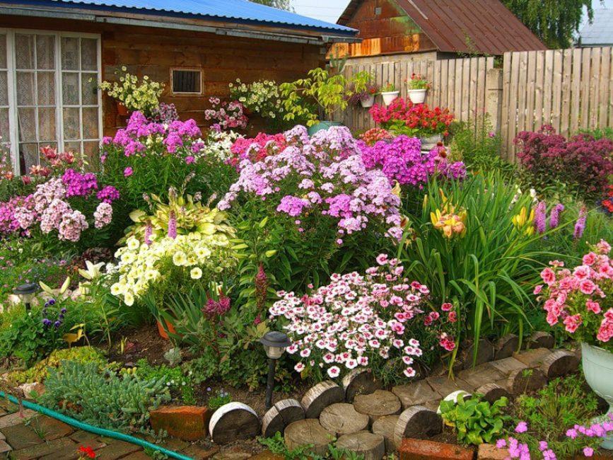 Cara terbaik untuk menghiasi taman anda adalah dengan menggunakan tumbuh-tumbuhan berbunga.