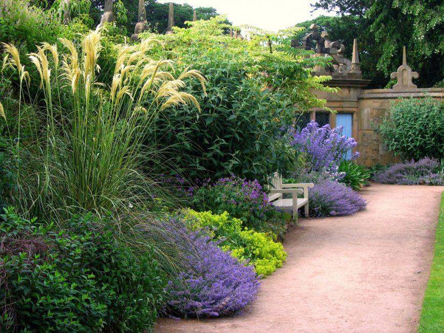 Mixborder - taman bunga dengan pelbagai jenis