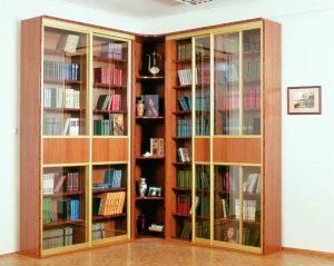Rak buku dengan pintu kaca - 170+ (Foto) Pilihan Model