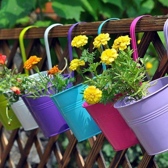 I fiori appesi devono essere annaffiati più spesso.