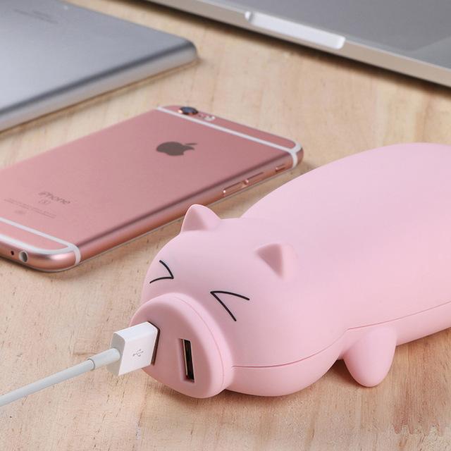 Bank kuasa dalam bentuk babi bukanlah hadiah yang sepele