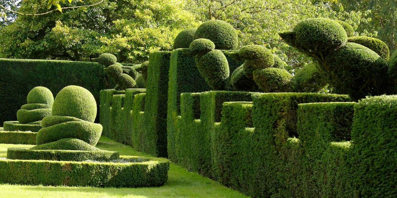 Forme geometriche per il tuo giardino