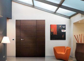 Özel evde giriş kapıları (145+ Fotoğraf): Nasıl ve güvenli ve güzel bir şekilde yapılır?