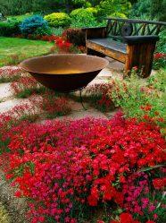 Membuat bunga dan bunga dengan tangan mereka sendiri - 210+ (Foto) Reka bentuk asal dan cantik