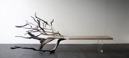 Bagaimana untuk membuat bangku pokok dengan tangan anda sendiri? 205+ (Foto) Pilihan yang berbeza untuk kegunaan anda
