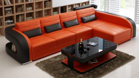 Salonun iç kısmındaki kanepeler (200+ Fotoğraf): Rahatlık yaratmak için tercih edilen ana noktalar
