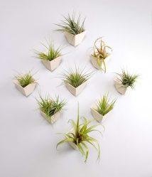 Vasi da fiori funzionali - 195+ (Foto) Idee che trasformano l'interno (pavimento / tavolo / pendente)