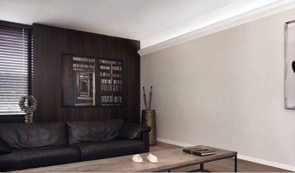 Bagaimana untuk memilih dan gam papan siling: 180+ (Foto) Reka bentuk untuk siling yang berbeza