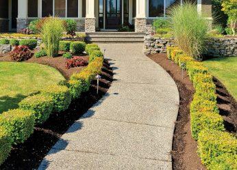 Qu'il est beau de faire des sentiers de jardinage de leurs propres mains à moindre coût? Plus de 180 photos d'options de banlieue en différents matériaux (tuiles, plastique, caoutchouc)