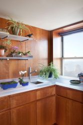 Ripiani in vetro nella stanza sul muro: più di 150 foto di uso nel soggiorno, in cucina, in bagno. Quale opzione scegliere?