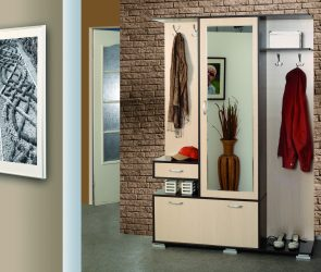 Koridorda gömme dolap: 170+ Tasarım ve fikir fotoğrafları. Alan düzenlemeyi öğrenme