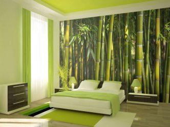 Yeşil bir yatak odası içini rahatlamak için en iyi yer nasıl yapar? 175+ (Fotoğraflar) Tasarım seçenekleri (perde, duvar kağıdı, duvar)